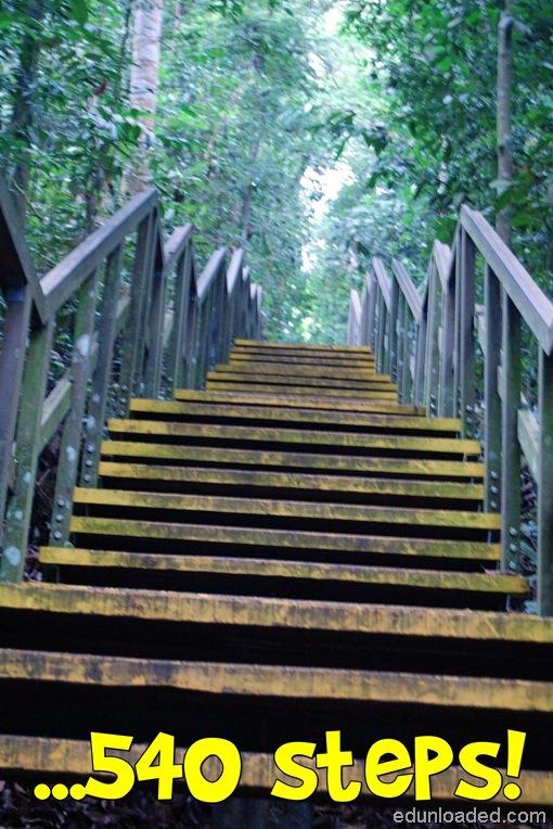 540 steps