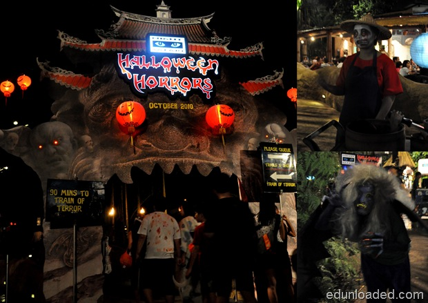 Halloween Night Safari2